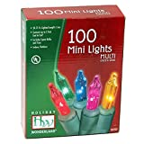 Holiday Wonderland #565223 100-Count Multi Color Christmas Light Set (2-pack)