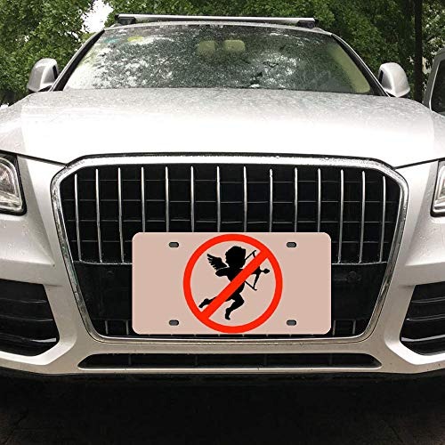 Tian Smile I Hate Valentine's Day Shoot Down The Eros Customized Aluminum License Plate Frame Cover Automobile License Plate Cover and Four-Hole Rectangular Silver License Plate 6
