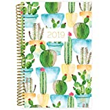 """bloom daily planners 2019 Calendar Year Day Planner - Passion/Goal Organizer - Monthly and Weekly Dated Agenda Book - (January 2019 - December 2019) - 6"""" x 8.25"""" - White Cacti"""