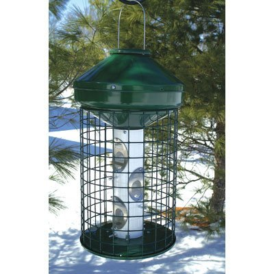 Avian Series Mixed Caged Bird Feeder
