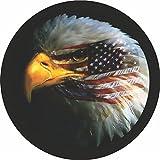 CustomGrafixTireCovers Eagle