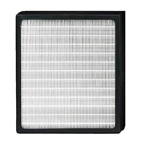 XINXI Replacement Idylis Air Purifier Filters D - 1 Pack Hepa & Carbon Filter Set for Idylis Air Purifiers AC-2118, AC-2123, IAP-10-280, 1AP10280, Part # IAF-H-100D, IAFH100D