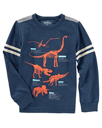(Osh Kosh Boys' Kids Long Sleeve Graphic Tee, Grey Dino, 7)