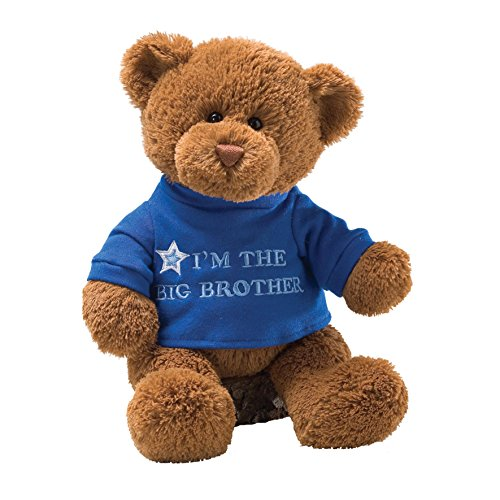 gund-t-shirt-message-teddy-bear-stuffed-animal