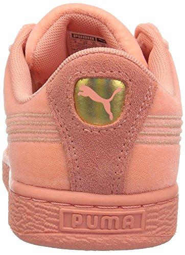 PUMA Girls Basket Classic Velour, Desert Flower-Metallic Gold, 11 M US Little Kid