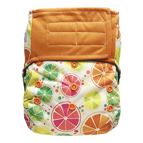 Baby AIO Cloth Diaper Shell One Size – Hook and Loop, Attached Insert (Citrus)