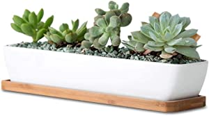 SPARIK ENJOY 11.1 inch Long Rectangle White Ceramic Succulent Planter Pots/Mini Flower Plant Containers with Bamboo Saucers Plant Window Boxes for Office/Home 11 x2.28x1.73inch (Long Rectangle)