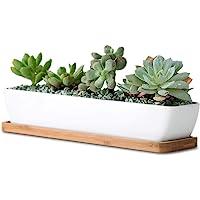 SPARIK ENJOY 11.1 inch Long Rectangle White Ceramic Succulent Planter Pots/Mini Flower Plant Containers with Bamboo…