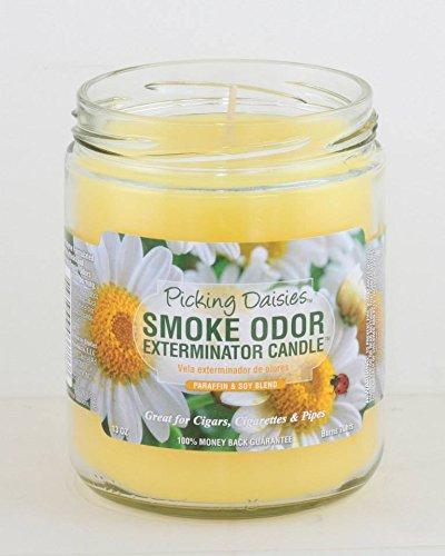Smoke Odor Exterminator 13oz Jar Candle, Picking (Daisy Usa Bouquet)