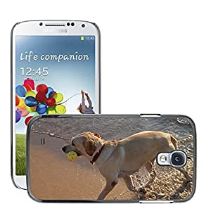 Hot Style Cell Phone PC Hard Case Cover // M00129996 Dog Play Running Sea Water Wave // Samsung Galaxy S4 S IV SIV i9500