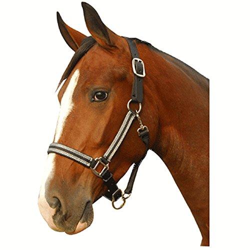 Best Horse Tack