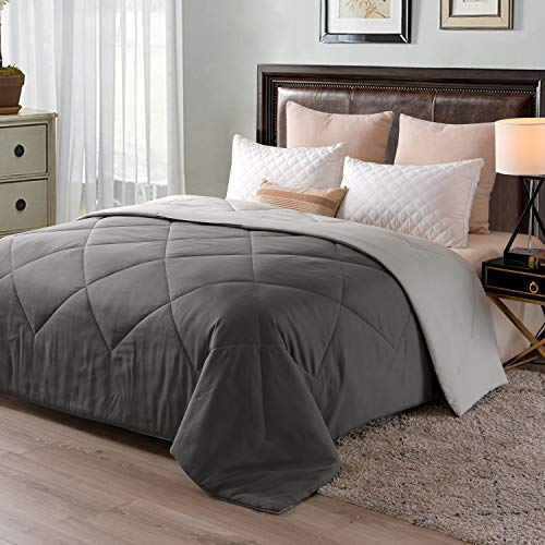 Exclusivo Mezcla Lightweight Reversible Down Alternative Quilted Comforter Duvet for All Seasons, Queen Size, Grey