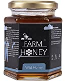 Farm Honey Wild Unprocessed Honey - 250 Gm
