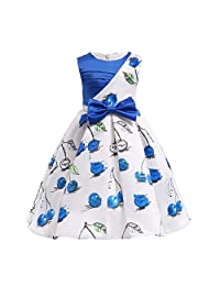 Baby Girl Princess Bridesmaid Dress, Changeshopping Girls Birthday Party Dress(2-7T)