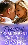 Practical Arrangement: Summer and Travis (The Southerlands Book 3)