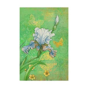 Trademark Fine Art Spring Flowers III by Maria Rytova 11