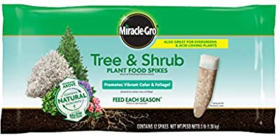 ree & Shrub Fertilizer Spikes - 12 PK