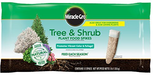 Miracle-Gro 4851012 12Pk Mg Tree and Shrub Spike - Evergreen Deciduous Trees