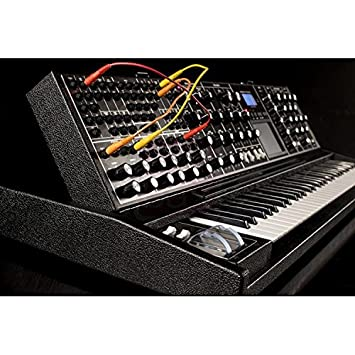 Moog Tolex Minimoog Voyager XL analogue synthesizer: Amazon