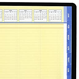 AT-A-GLANCE 2017 Quick Notes Weekly Monthly Appointment Book, 8.25 x 10.88, Black (7695005)