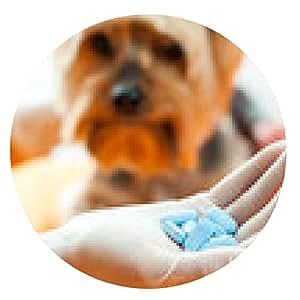 alfombrilla de ratón Veterinario con pastillas para perros. - ronda - 20cm