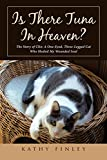 img - for Is There Tuna in Heaven?: The Story of Clio: A One-Eyed, Three-Legged Cat Who Healed My Wounded Soul book / textbook / text book