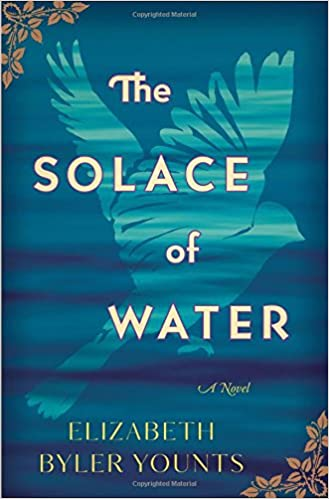 Amazon The Solace Of Water A Novel 9780718075668 Elizabeth