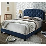 DG Casa Wembley Tufted Upholstered Panel Bed Frame with Nailhead Trim Headboard, Queen Size in Blue Fabric