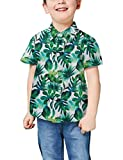 Little Boys Girls Novelty Tropical Hawaiian Shirt