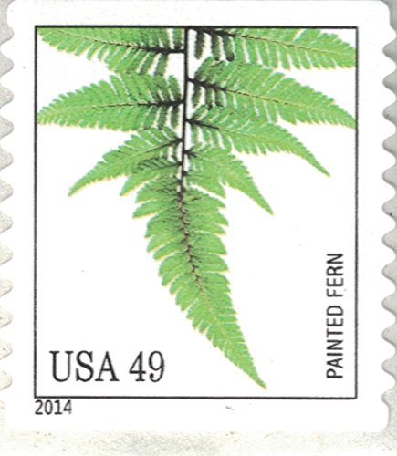 Strips of 10 Ferns USPS Forever Postage Stamps featuring a close up photograph of five different species of fern (10 Strips of 10 Stamps) Photo #3