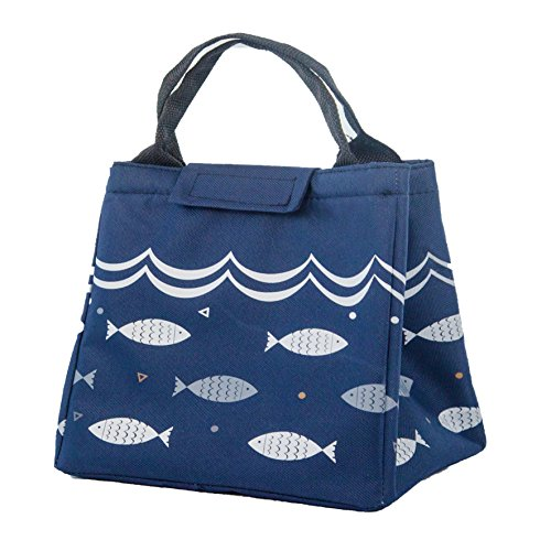 HX_HQ Lunch Bag Reusable Lunch Box Tote Bag Insulated Lunch bags for Women Men Kids Lunch Bag for Work school Picnic BBQ