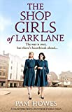 Download The Shop Girls of Lark Lane: A heartbreaking post-war family saga in PDF ePUB Free Online