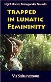 Trapped in Lunatic Femininity: Light Horror Transgender Novella