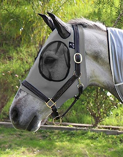 Bug Eye Fly Masks Horses - 6