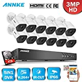 ANNKE 3MP(19201536@18fps) H.264+ Security Camera System 16Channel 4K DVR Recorder with 4TB HDD and (12) 3.0 Megapixels IP66 Weatherproof Metal Cameras(Indoor and Outdoor)