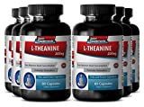 Theanine children - L Theanine 200mg - Concentration booster (6 Bottles - 360 Capsules)