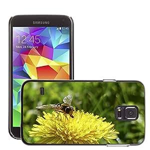 Etui Housse Coque de Protection Cover Rigide pour // M00115325 Diente de león de la flor salvaje de // Samsung Galaxy S5 S V SV i9600 (Not Fits S5 ACTIVE)