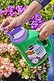 Miracle-Gro Shake 'N Feed Rose & Bloom Plant