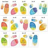 【ココサブ】月齢カード マンスリーカード マンスリーフォト 月齢フォト 月齢ステッカー a4サイズ 14枚1セット (天使のはね)