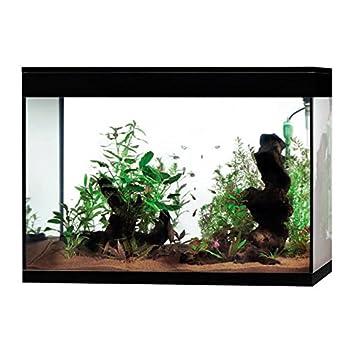 Askoll Aquarium Pure Black Xl High Cube Led Amazon De Kuche Haushalt