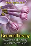 Gemmotherapy: The Science of Healing with Plant Stem Cells