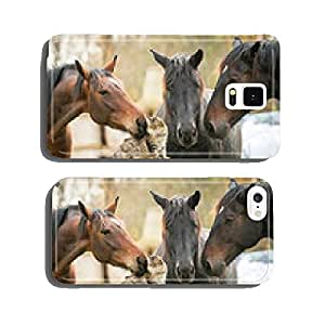 Three horses and cat cell phone cover case Samsung S5
