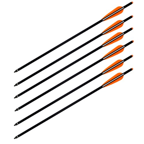 Wizard Carbon Fiber Crossbow Bolts - 6/pack (20