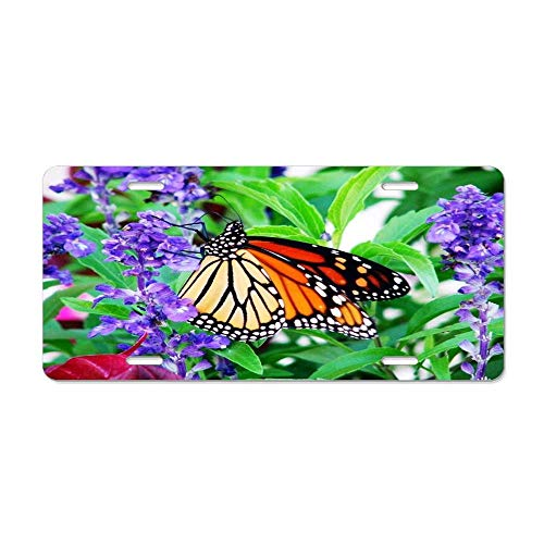(Blingreddiamond White Yard Visitor Butterfly Garden Back Black Monarch Orange Purple Flowers Animated Clipart Personalized Novelty Front License Plate Decorative Vanity Aluminum Car Tag)