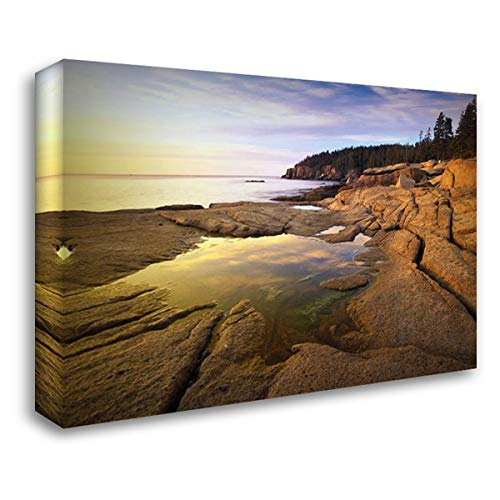 (Atlantic Coast Near Thunder Hole, Acadia National Park, Maine 39x28 Gallery Wrapped Stretched Canvas Art by Fitzharris, Tim)