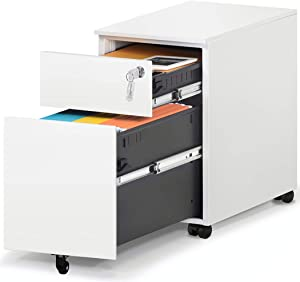 HAIAOJIA 2 Drawer Mobile File Cabinet with Lock Metal Filing Cabinet for Legal/Letter/A4/F4 Size, Fully Assembled Include Wheels, Home/Office Design, White