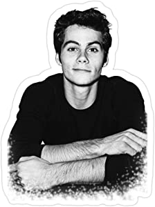 Jess-Sha Store 3 PCs Stickers Teen Wolf, Dylan O'Brien Sticker for Laptop, Phone, Cars, Vinyl Funny Stickers Decal for Laptops, Guitar, Fridge