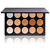 Nyx Full Coverage Concealer SHANY Cosmetics Professional Cream Foundation and Camouflage Concealer 15 Color Palette, 13 Ounce