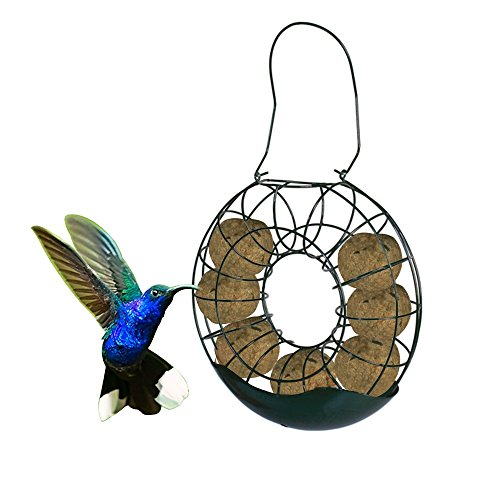 B&P Fat Ball Suet Bird Feeder (Ring) - Seed Suet Holder