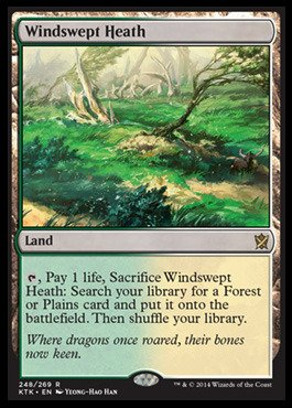 Magic: the Gathering - Windswept Heath (248/269) - Khans of Tarkir by Magic: the Gathering